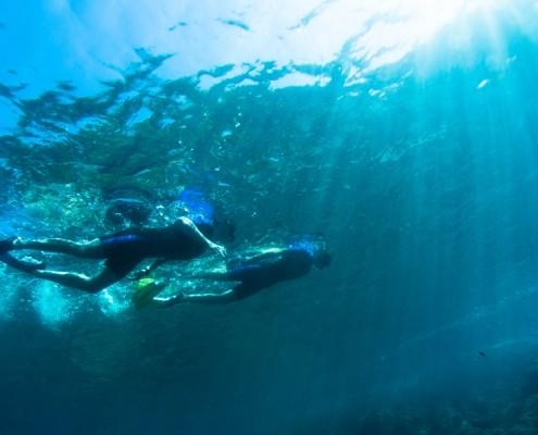 Snorkeling guidé à Nice