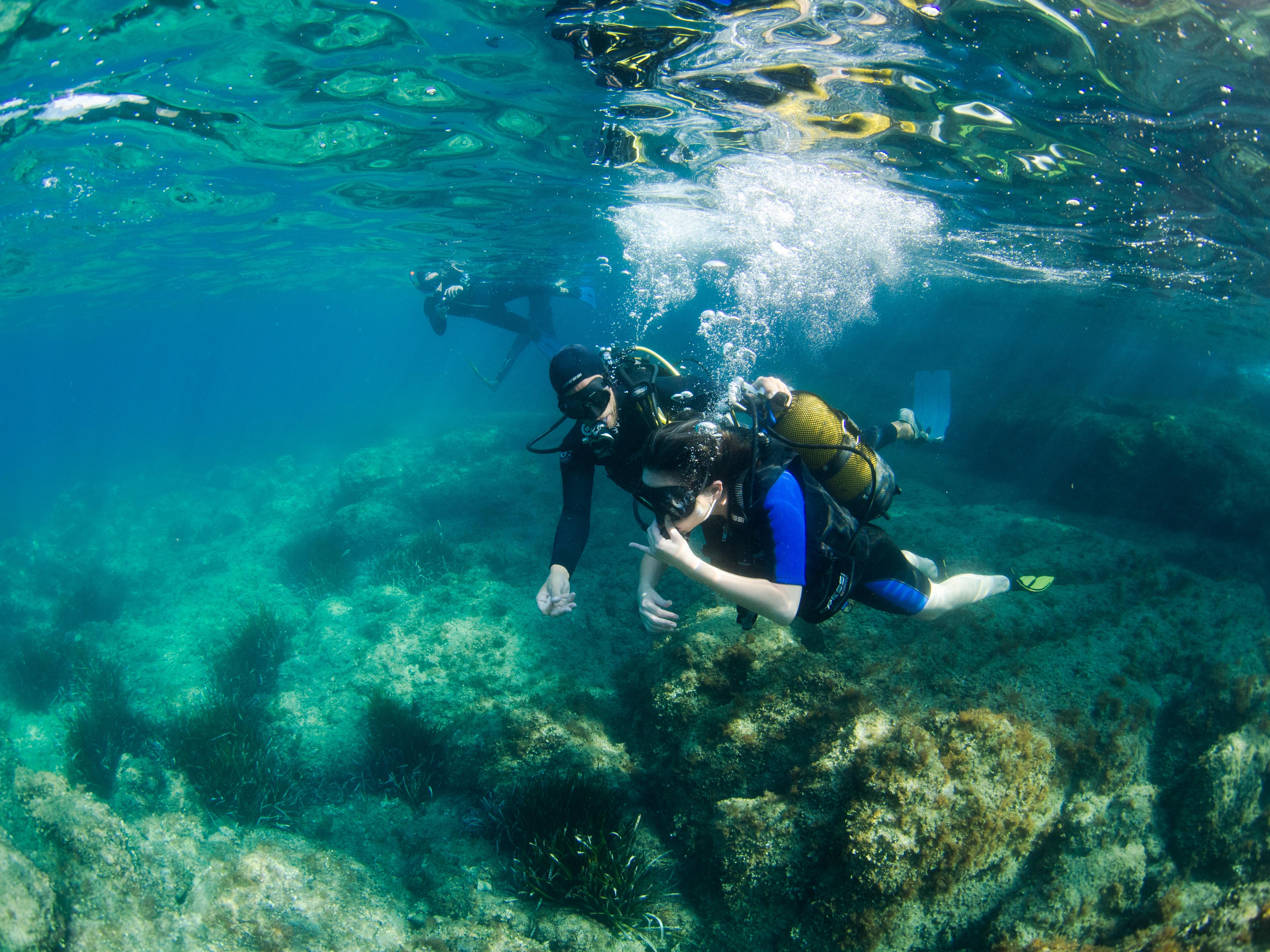 club d eplongée sous marine nice