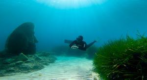 apnée sur les statues immergées des iles d elérinc